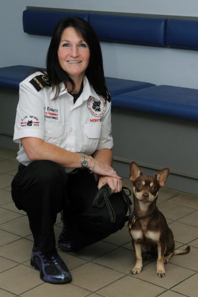 Ecole De Dressage Brigade Canine - Photo 5