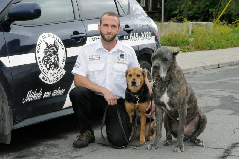 Ecole De Dressage Brigade Canine - Photo 4