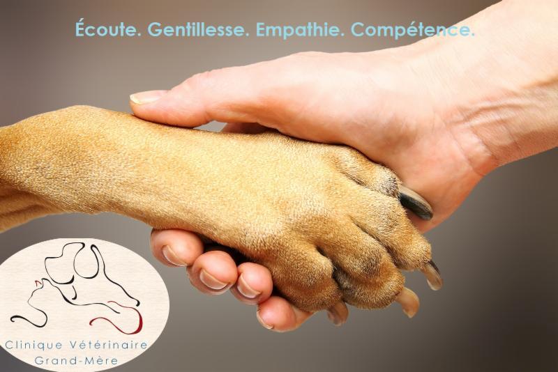 Clinique Vétérinaire Grand-Mère - Photo 5