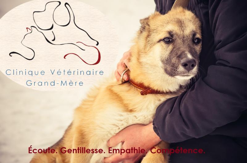 Clinique Vétérinaire Grand-Mère - Photo 3