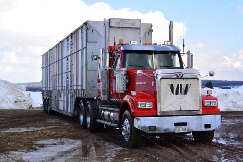 McConchie Trucking - Photo 2