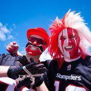 Calgary Stampeders - Photo 7