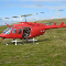 Newfoundland Helicopters Limited - Helicopter Service - 1-877-366-2841