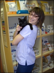 Guildcrest Cat Hospital - Photo 6