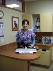 Guildcrest Cat Hospital - Photo 10