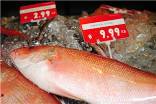 Merivale Fish Market - Photo 7