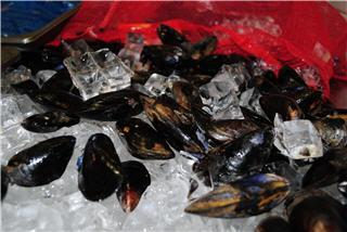 Merivale Fish Market - Photo 8