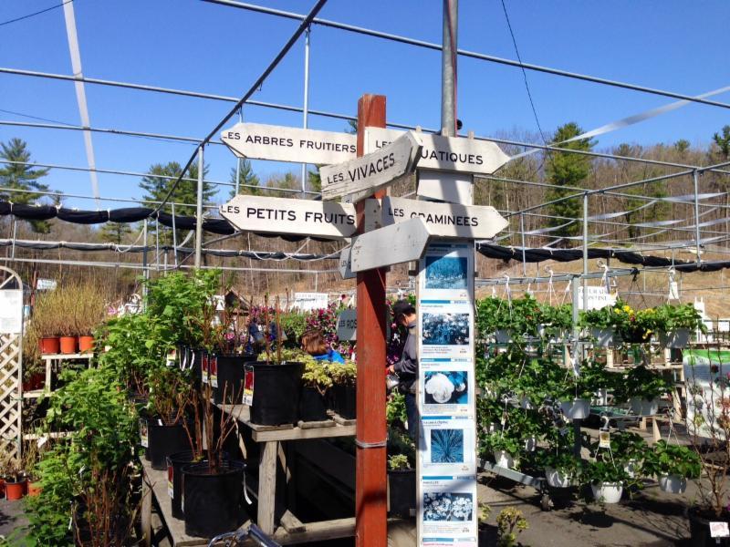 Centre jardin cloutier lt e horaire d 39 ouverture 11 ch for Centre de jardin