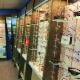 Dr Steven Matthews - Optométristes - 519-336-4113