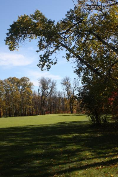 Treherne Delahunt Golf & Country Club - Photo 5