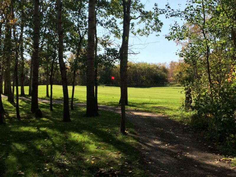 Treherne Delahunt Golf & Country Club - Photo 3