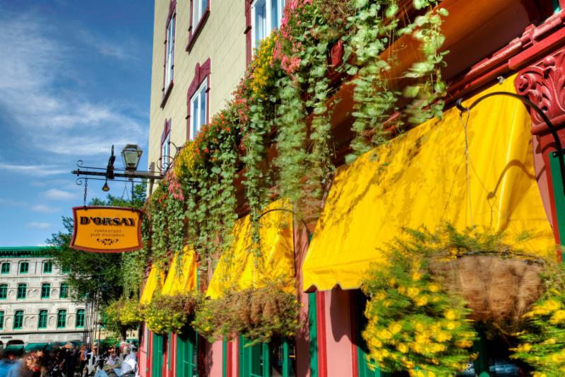 Restaurant D'Orsay Pub - Photo 1