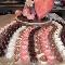 Pasticceria Gelateria Italiana Ltd - Bakeries - 613-233-2104