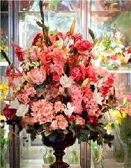 Fleuriste Côte-des-Neiges - Photo 3
