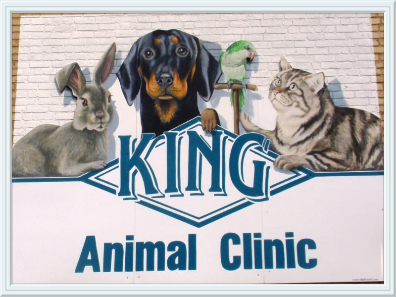 King Animal Clinic - Photo 5