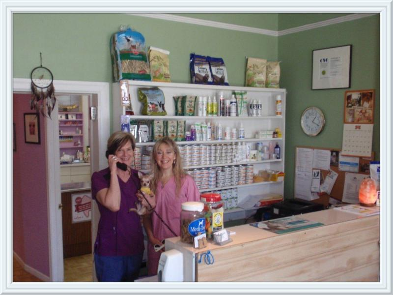 King Animal Clinic - Photo 6