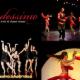 Ecole De Danse Latine Madéssimo - Dance Lessons - 450-375-6007