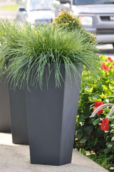 Planterra Ltée - Photo 9