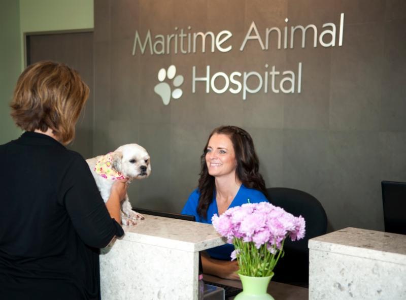 Maritime Animal Hospital - Photo 5