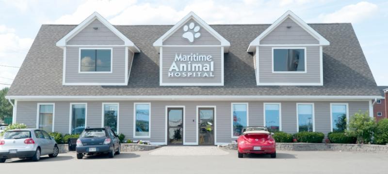 Maritime Animal Hospital - Photo 9