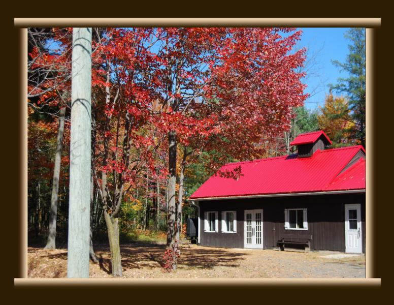Cabane A Sucre Erable Rouge - Photo 3