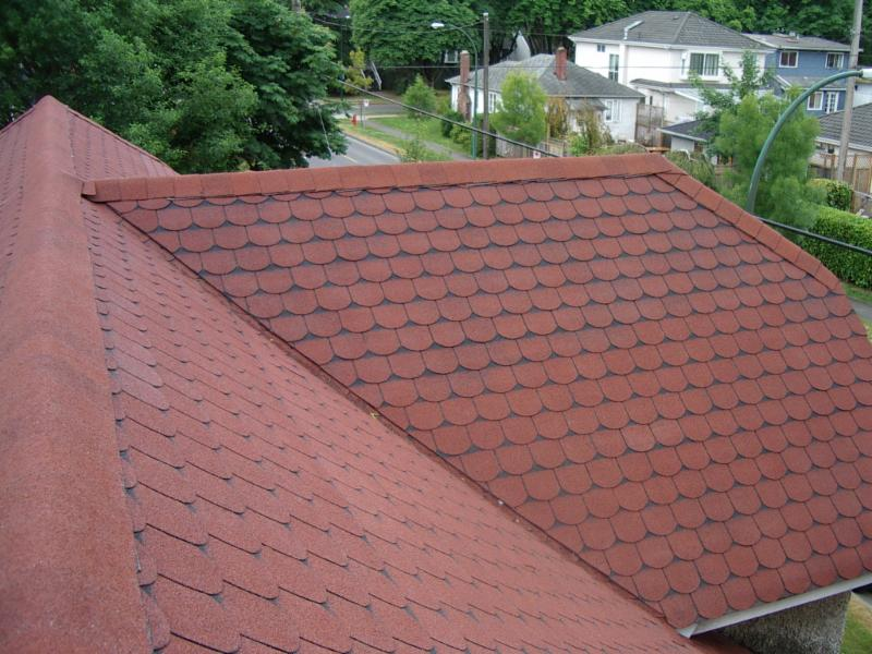 Absolute Roof Solutions - Photo 8