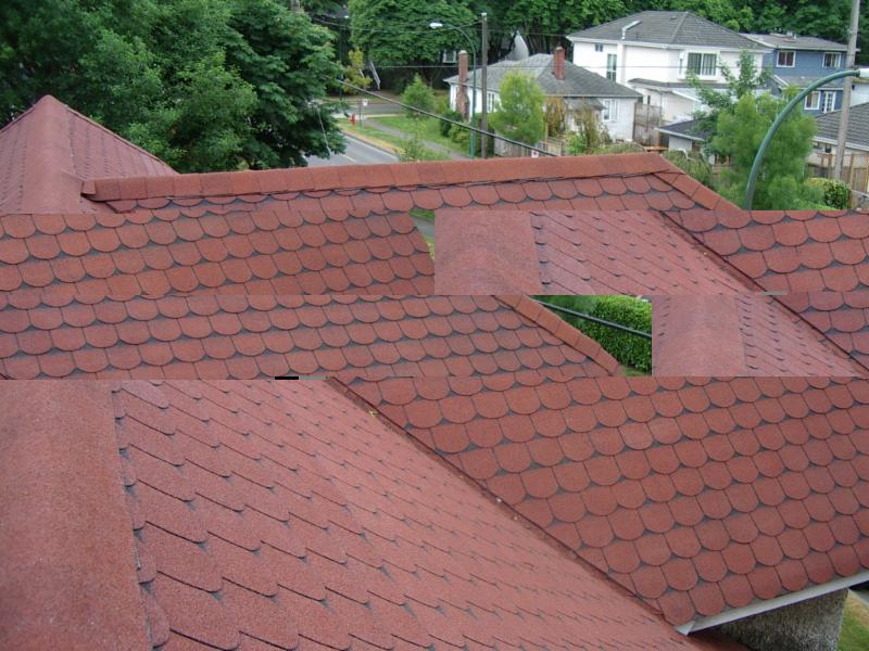 Absolute Roof Solutions - Photo 7
