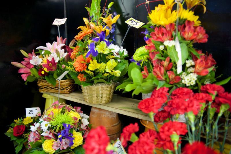 Florateria - Photo 16