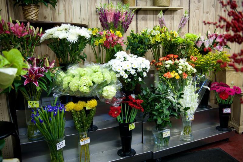 Florateria - Photo 4