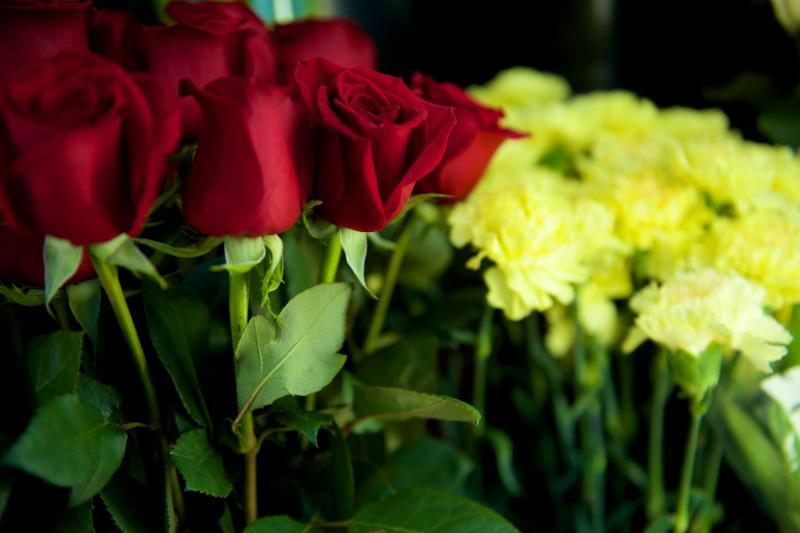 Florateria - Photo 78