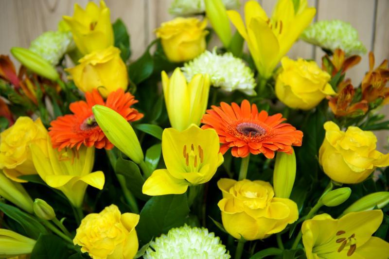 Florateria - Photo 33
