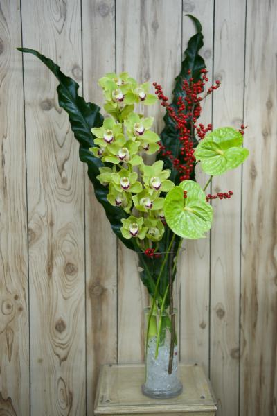 Florateria - Photo 98