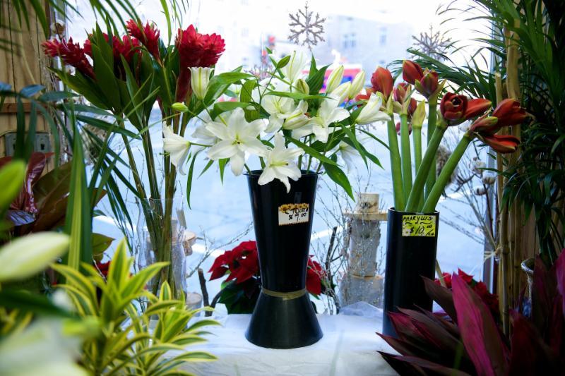 Florateria - Photo 38