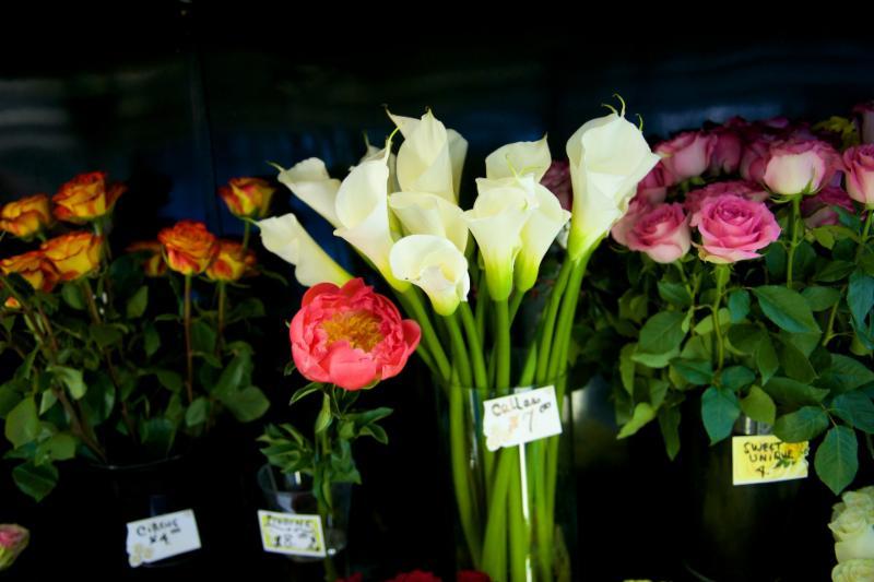 Florateria - Photo 15