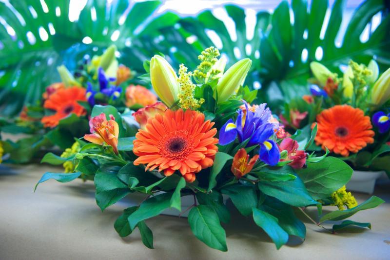 Florateria - Photo 85