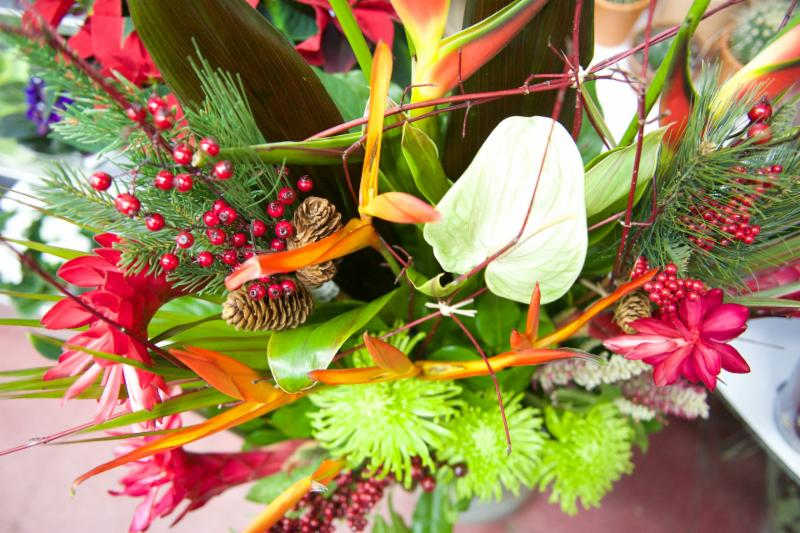 Florateria - Photo 12