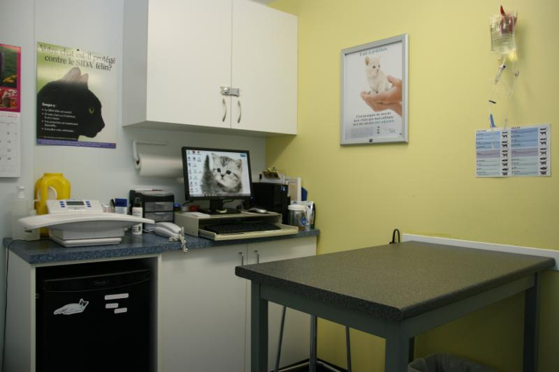 Clinique Vétérinaire Féline Inc - Photo 5