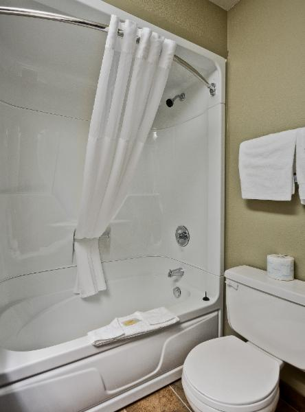 Quality Inn - Photo 128
