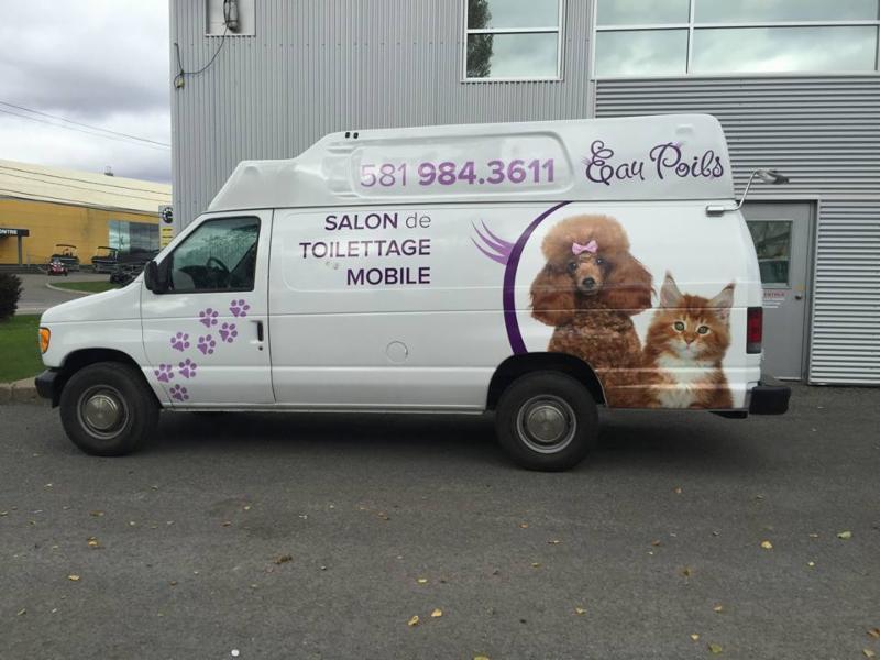 Salon de toilettage mobile eau poils horaire d 39 ouverture for Salon toilettage