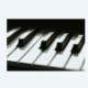View Nina Music Studio's Maple profile