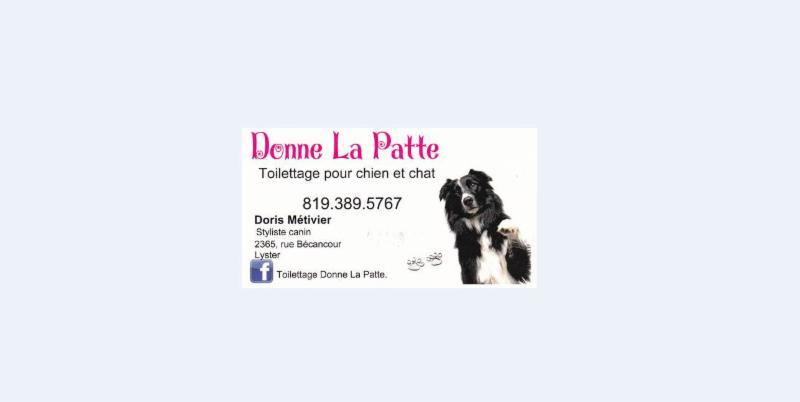 Toilettage Donne La Patte - Photo 3