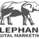 Elephant Digital Marketing - Conseillers en marketing - 647-609-1045