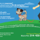 Serre-moi la patte - Services pour animaux de compagnie - 514-458-0929