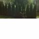 GTX Irrigation and Landscaping - Entrepreneurs généraux - 604-773-6994