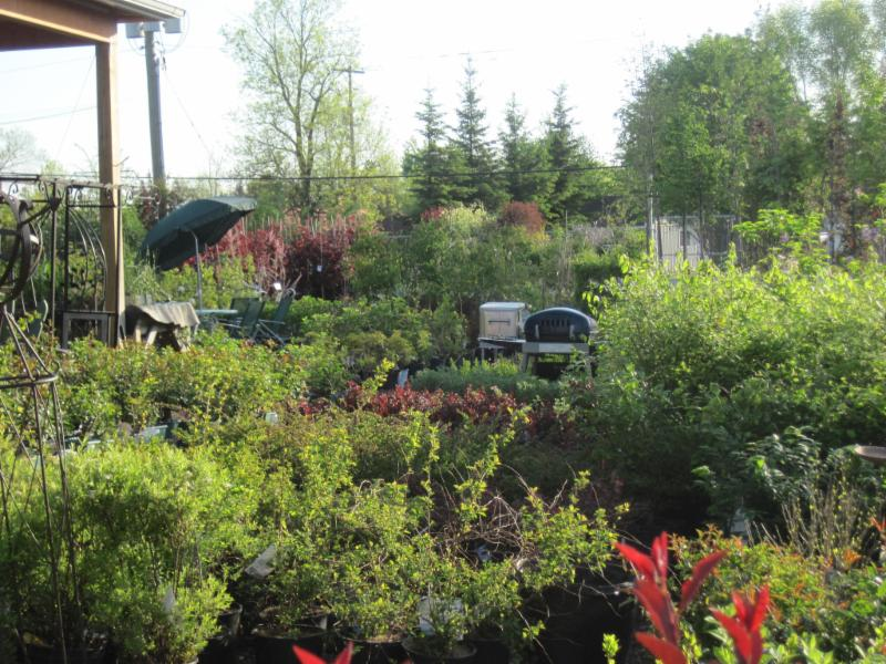 Peterborough Landscape Supply - Photo 11
