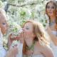 Diamond Decor - Accessoires et organisation de planification de mariages - 647-949-0656