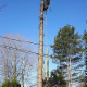 Services d'Arbres Rive-Nord - Service d'entretien d'arbres - 514-779-1350