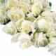 Floessence Wedding And Event Planning - Accessoires et organisation de planification de mariages - 647-224-9333