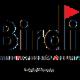 Birdi CPA Professional Corp - Comptables professionnels agréés (CPA) - 905-499-3610