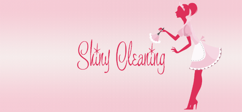 Shiny Cleaning Brand Banner